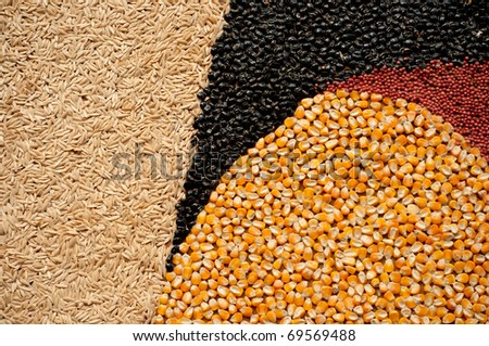 Colorful cereal seeds background. Abstract  background - stock photo