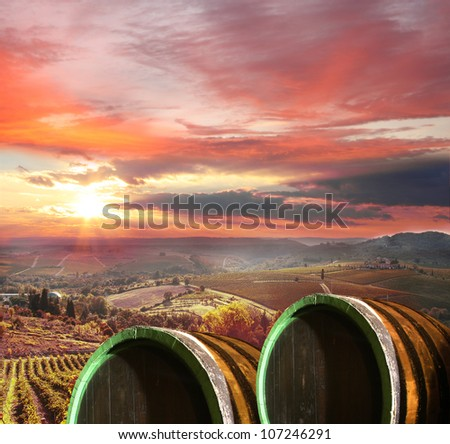 Colorful Chianti with wine barrels  in Italy - stock photo