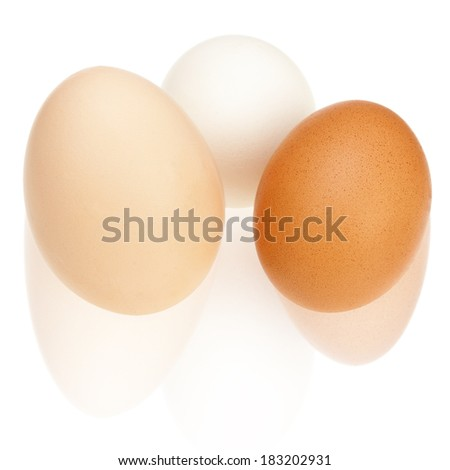 Colorful chicken eggs with reflection isolated on white background. Closeup.