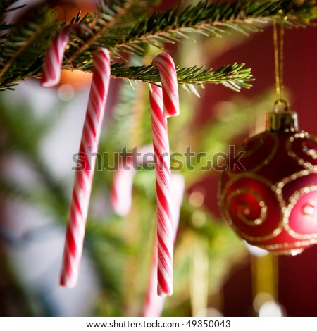 Colorful christmas ornaments hanging from christmas tree