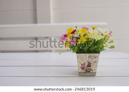 Colorful cosmos flower on white background - stock photo