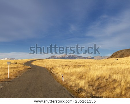 Colorful countryside of tussock and mountains on the way to Mt.John, Tekapo, South Island, New Zealand. - stock photo