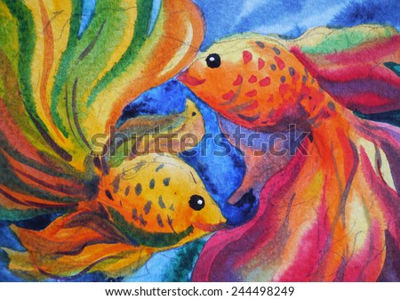 colorful couple goldfish watercolor painting on paper - stock photo