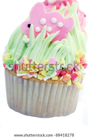 Colorful Cup Cake