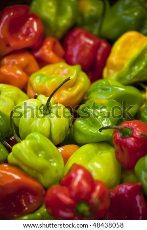 Colorful Display of Beans at market - stock photo