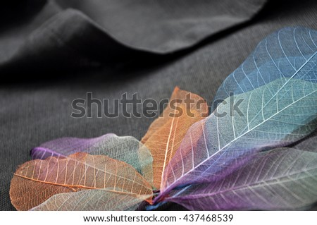 Colorful dried leaves on gray fabric background - stock photo