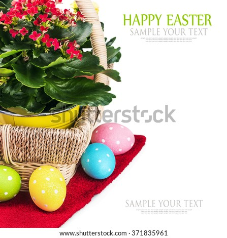 colorful easter eggs and spring flower isolated on white background. Text for example, is removed - stock photo