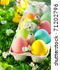 Colorful Easter Eggs in an egg box on grass - stock photo