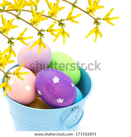 Colorful easter eggs in bucket with forsythia flowers  isolated on white background - stock photo
