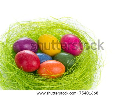 colorful easter eggs in nest isolated