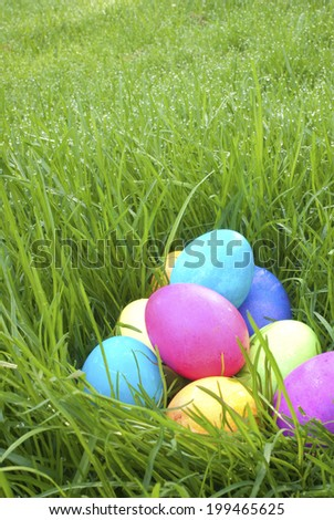 Colorful Easter Eggs left by the Easter Bunny in Wet Grass with room or space for copy, text.  Vertical