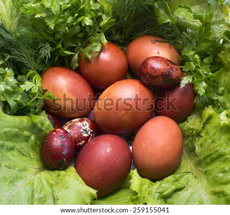 colorful Easter eggs on a fresh green grass - stock photo