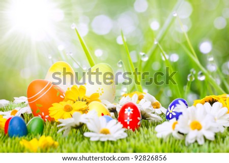 colorful easter eggs on a meadow space for text