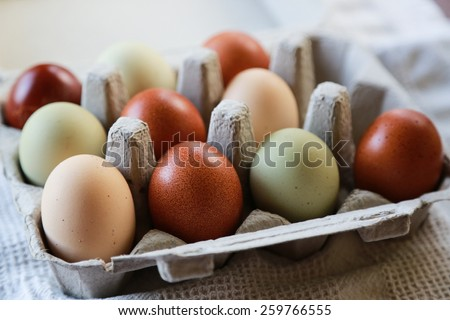 Colorful Eggs - stock photo