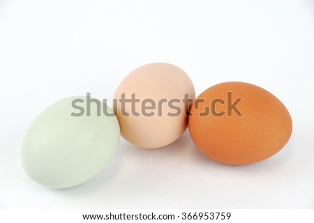 colorful eggs on white background