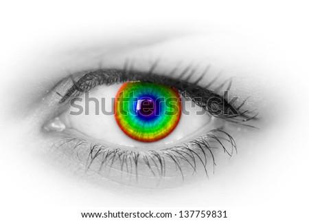 Colorful eye on white. - stock photo