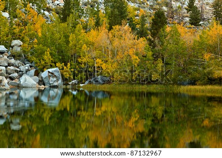 Colorful fall and autumn foliage - stock photo