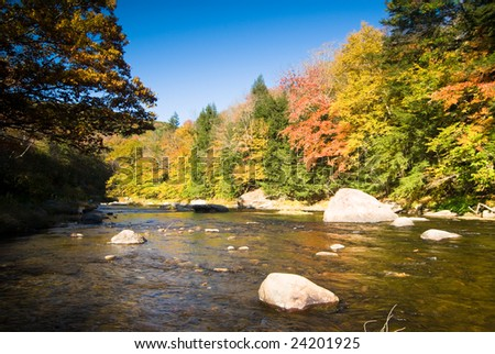 Colorful fall foliage on the bank of a small river - stock photo