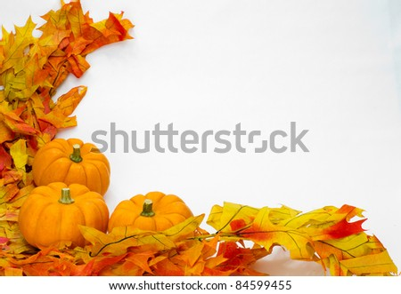 Colorful fall leaves and pumpkins for decoration on white