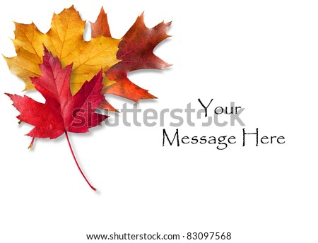 Colorful Fall leaves framing a message area - stock photo