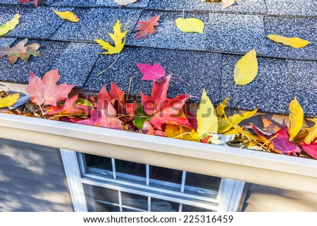 Colorful fall leaves in the gutter on a roof - stock photo