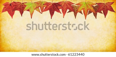 Colorful fall leaves on a textured paper background. - stock photo