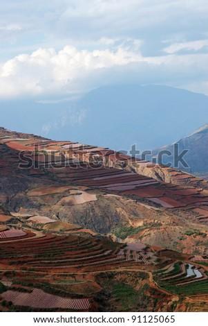 Colorful farmland - stock photo