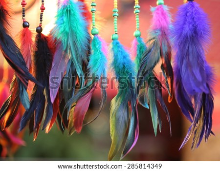 colorful feather ,colored ostrich feather, background - stock photo