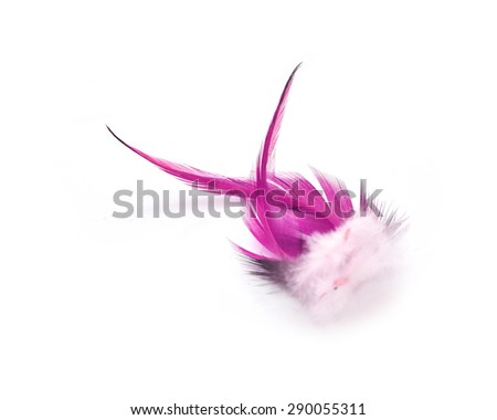 Colorful feathers, chicken feathers On a white background