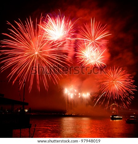 Colorful fireworks on the black background - stock photo