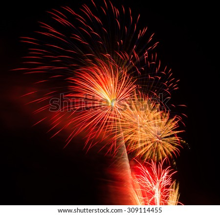 Colorful fireworks on the black sky background