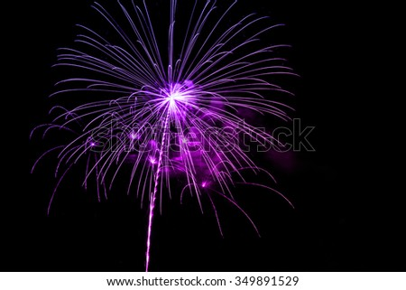 Colorful fireworks on the black sky background.
