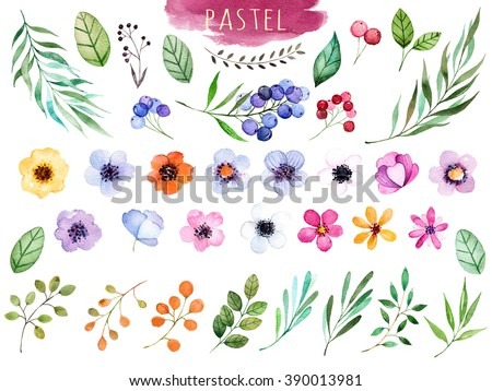 Colorful floral collection with multicolored flowers,leaves,branches,berries and more,Colorful floral collection with 37 watercolor elements.Set of floral elements.Pastel collection - stock photo