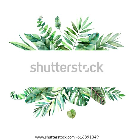 Tropical Logo Stock Images Royalty Free Images Amp Vectors