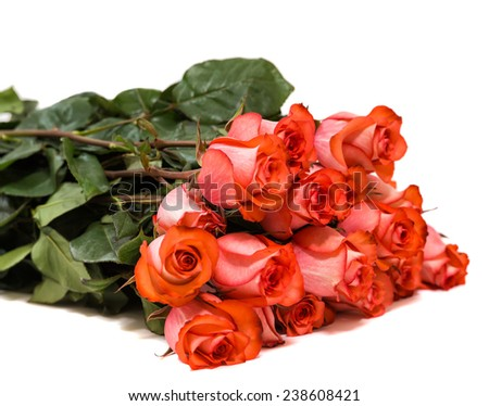 Colorful flower bouquet from red roses isolated on white background. Closeup. - stock photo