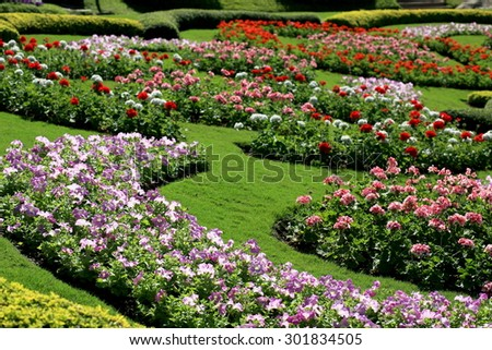 Colorful flower garden in Mae Fah Luang, Chiang Rai, Thailand. Landscape
