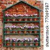 Colorful Flowerpot display of Pansies on the wall of an English Garden - stock photo