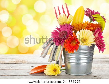 Colorful flowers and garden tools on wooden table with sunny bokeh - stock photo