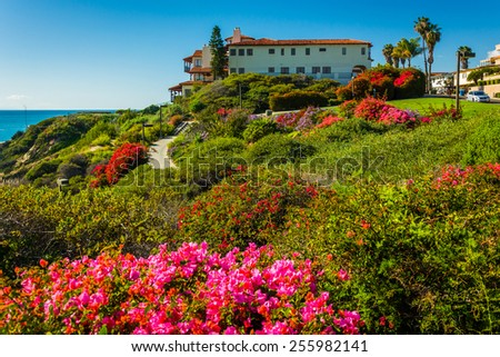 Colorful flowers and view of large house at Calafia Park, in San Clemente, California. - stock photo