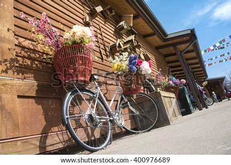 Colorful Flowers basket on a nice Bicycle in Denver Zoo