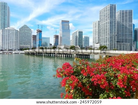 Colorful flowers Biscayne bay skyline photo. Miami florida usa - stock photo