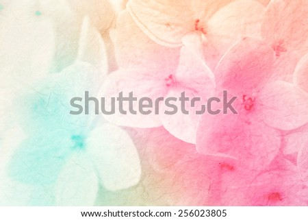 colorful flowers in soft color and blur style on mulberry paper texture - stock photo