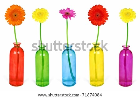 Colorful flowers in vases isolated on white background - stock photo