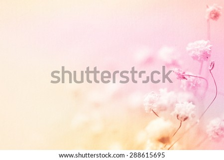 colorful flowers in vintage color style on mulberry paper texture for background - stock photo