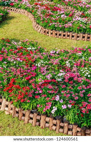 Colorful flowers over the wood fence in the garden - stock photo