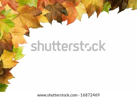 colorful frame made from an autumn leafs - stock photo