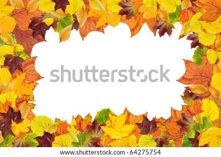 Colorful frame made of fallen autumn leaves on the white background with space for text - stock photo
