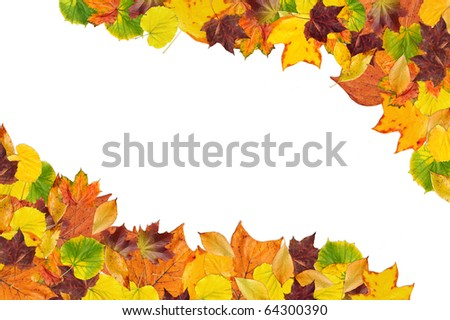 Colorful frame made of of fallen autumn leaves on white background - stock photo