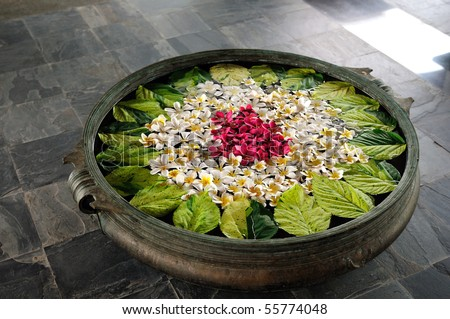 Colorful Frangipani flowers in a bowl of water - stock photo