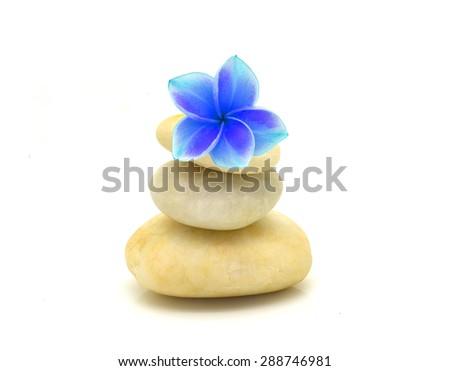 Colorful frangipani flowers on white pebbles. On a white background - stock photo